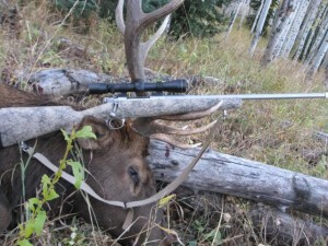Kimber Montana Rifle