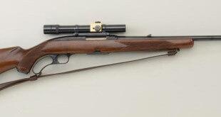 308 Winchester