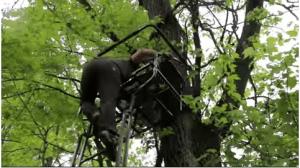 Treestand For Deer Hunting