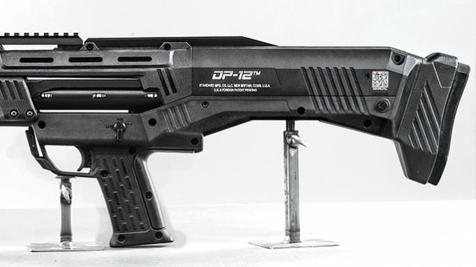 swmpas-dp12
