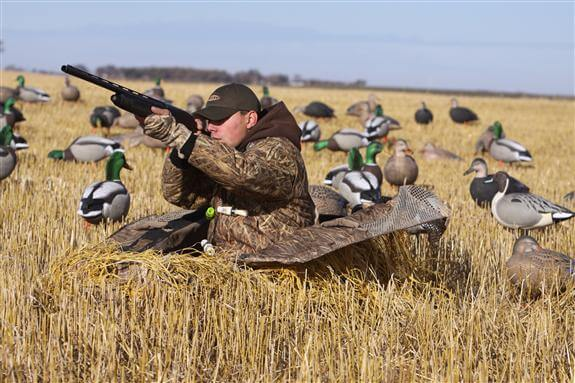 Waterfowl hunting season