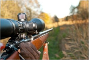 tactical rifle scope